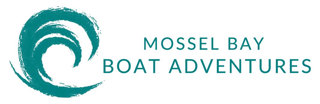 Mossel Bay Boat Adventures - Family Adventure Activities